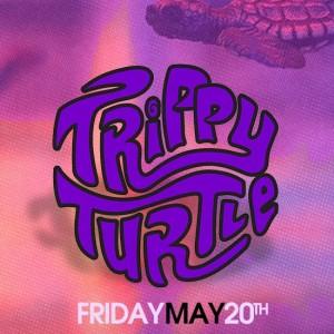 noize-fridays-trippy-turtle